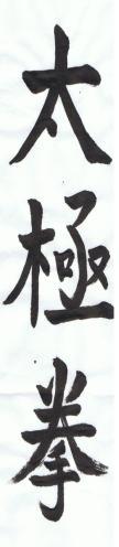 BROCHURE 31 oct-3nov 2014 WCTA-F-Bretagne Chen Ying Jun-2